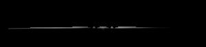Gary-Gitlin-Logo